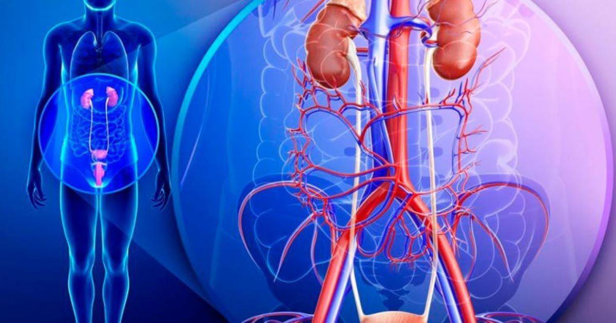 oncologia-urologica-1200x630.jpg
